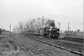 Steam train through Little River station August 1969